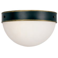 Crystorama CAP-8503-MK-TG - Brian Patrick Flynn for Crystorama Capsule Outdoor 2 Light Ceiling Mount