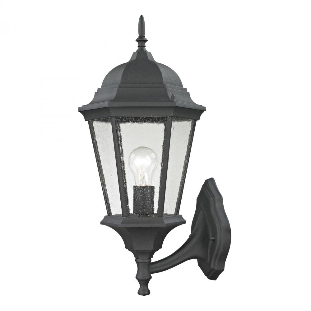 Temple Hill Coach Lantern In Matte Textured Blac